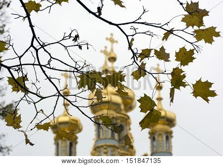 Yellow maple leaves in autumn the Golden domes of the temple Orthodox Church Russia Tsarskoe Selo Pushkin