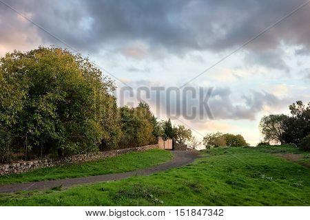 rural scene at evening, Sicily