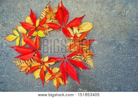 Circle From Many Different Colorful Autumn Leaves On A Neutral Grey Background With Copy Space For Y
