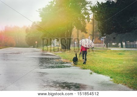 Lonely girl with a dog walking in the rain on a cold day