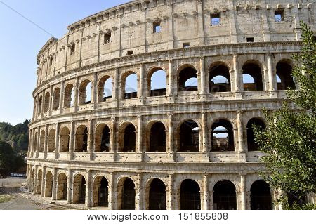 Rome Italy - September 11 2016 : The historical Roman Colosseum Amphitheatre in Rome