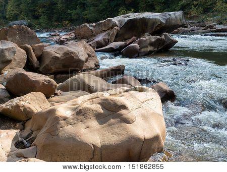 View Of Cheat River Rapids Near Albright