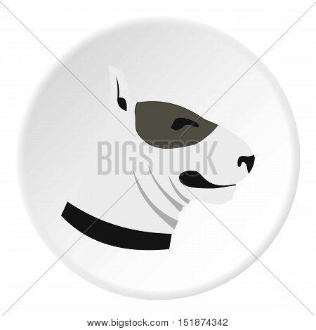 Bull terrier dog icon. Flat illustration of bull terrier dog vector icon for web