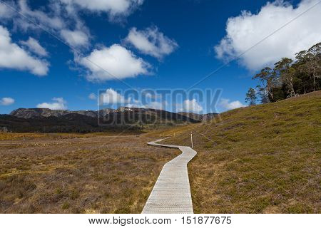 Wooden Winding Boardwalk In Highlands Of Cradle Mountain National Park On Bright Sunny Day. Tasmania