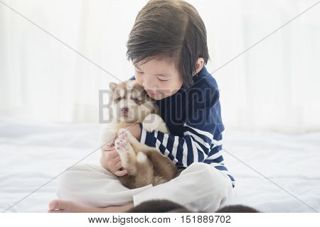Cute asian child and siberian husky puppies on white bed