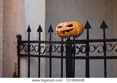 halloween traditional autumn holiday symbol of orange pumpkin with cut spooky face impaled on iron sharp gate outdoor