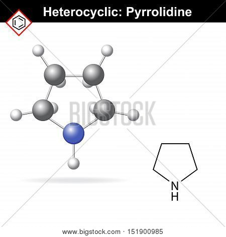 Pyrrolidine chemical structure and 3d model 2d and 3d vector illustration chemical icon isolated on white background eps 8