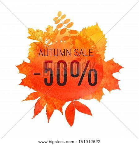 Autumn Leaf Foliage Watercolor. Autumn Sale - 50 % Off . Fall Sale. Web Banner Or Poster For E-comme