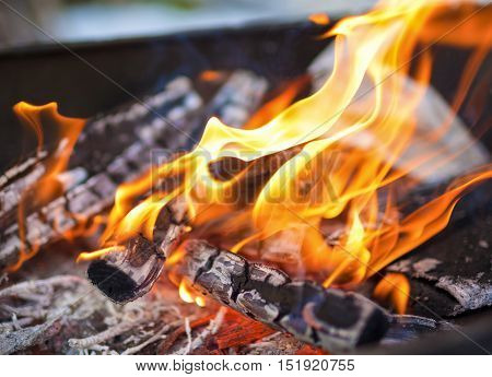 Closeup of Flames of Fire Of Bonfire Ooutdoors. Horizontal Shot