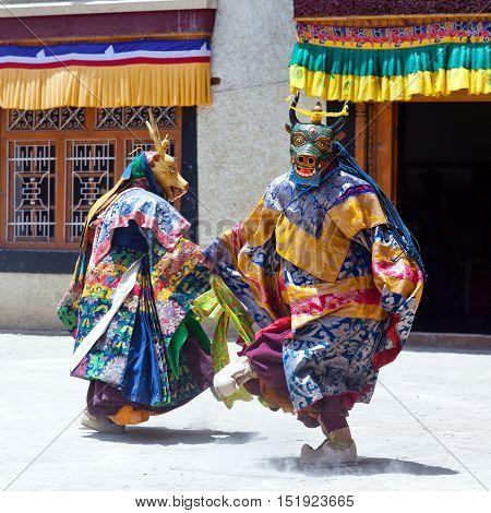 Cham Dance In Lamayuru Gompa In Ladakh, North India