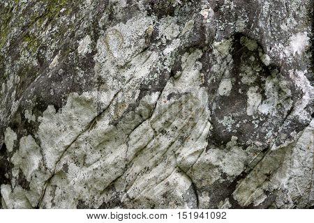 Large mountain rock background at North Georgia, USA.