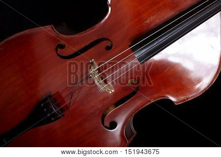 Contrabass close up in front of black background
