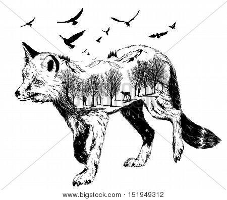 Vector Double Exposure, Silhouette Of Fox