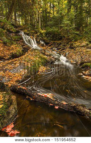 One of the many gorgeous waterfalls in Bracebridge Ontario Canada. Taken during Autumn Fall.