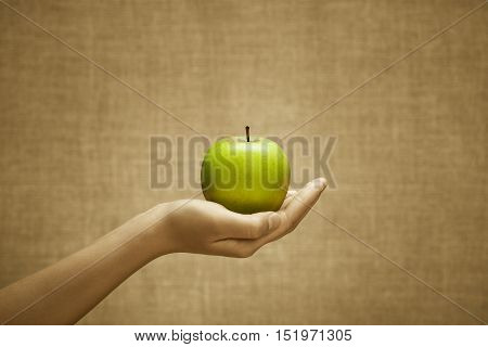 Green juicy apple fruit in female hand on burlap background. Cultivation selection stands out from the crowd concept. Sepia and color series.