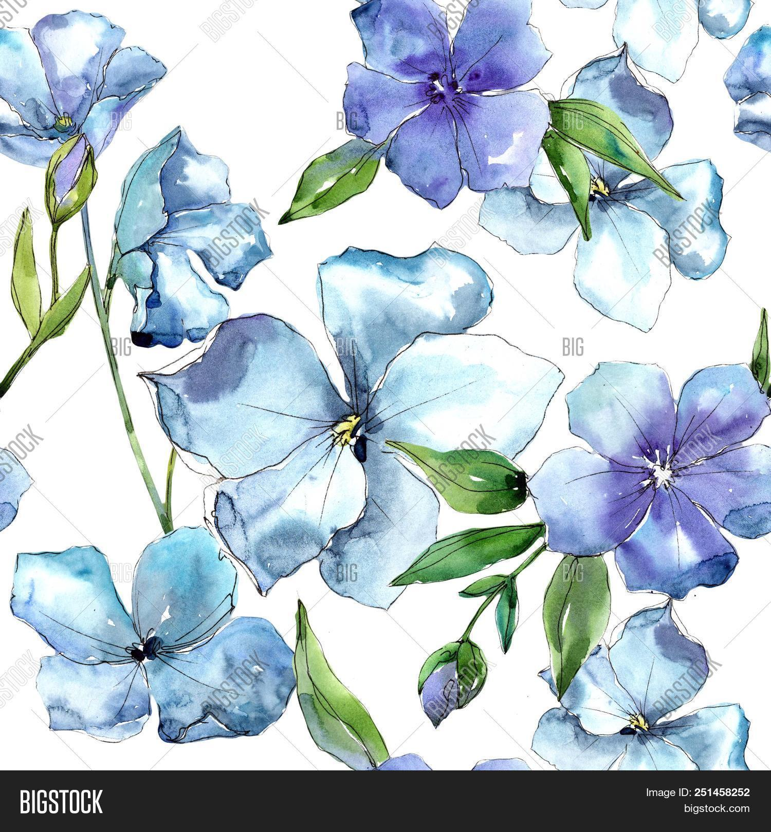 Watercolor Blue Flax Image Photo Free Trial Bigstock