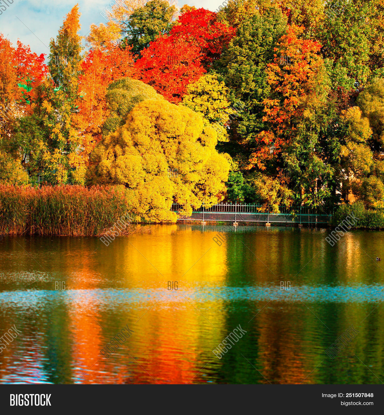 Beautiful autumn park image photo free trial bigstock for Immagini di laghetti