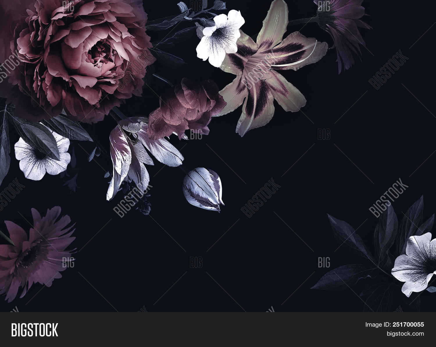 Floral Vintage Card Image Photo Free Trial Bigstock