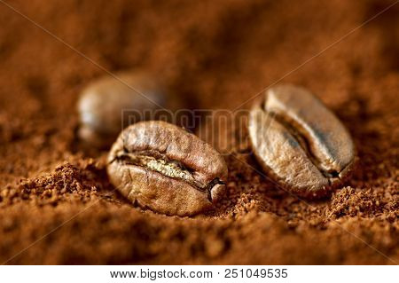 Close-up Photo Of Roasted Brown Coffee Beans On Textured Background Of Ground Coffee