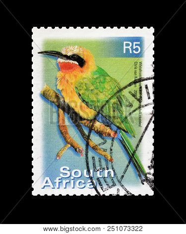 South Africa - Circa 2000 : Cancelled Postage Stamp Printed By South Africa, That Shows White Fronte