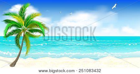 Landscape Of The Tropical Shore. Landscape Of The Sea Shore With Palm Tree. Sea Shore With Palm Tree