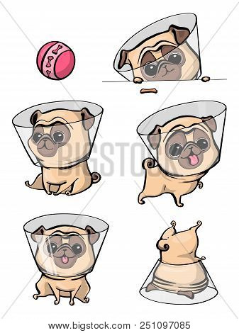 Cartoon Character Pug Dog Poses. Cute Pet Dog In The Flat Style. Set Dogs. Cute Dog Of Pug Breed. Ve