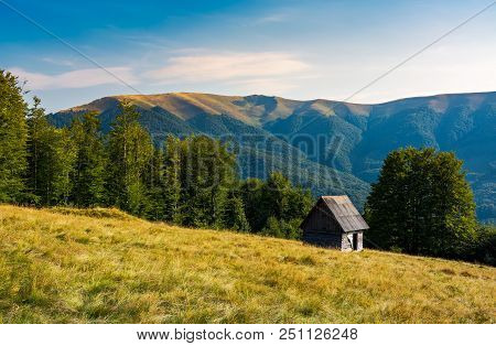 Herd Shed On A Grassy Hillside Near The Forest. Abandoned Place In Mountains. Lovely Afternoon Lands