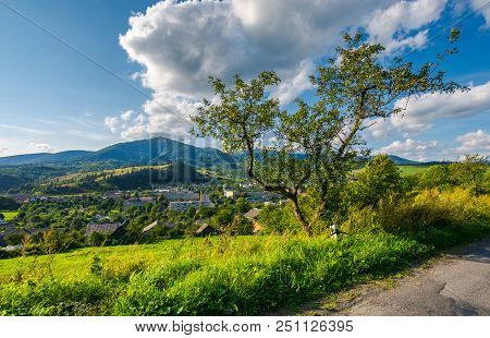 Tree On The Hill Above The Town In Valley. Beautiful Mountainous Countryside Weekend. Wonderful Weat