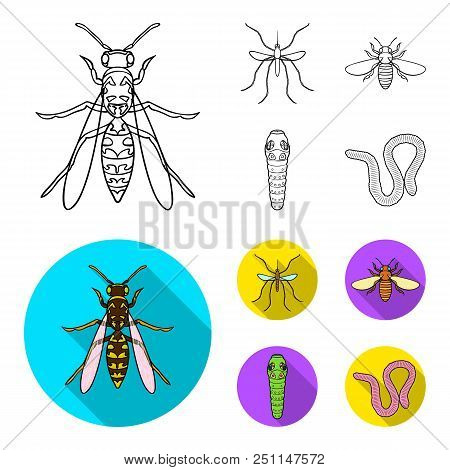 Worm, Centipede, Wasp, Bee, Hornet .insects Set Collection Icons In Outline, Flat Style Vector Symbo