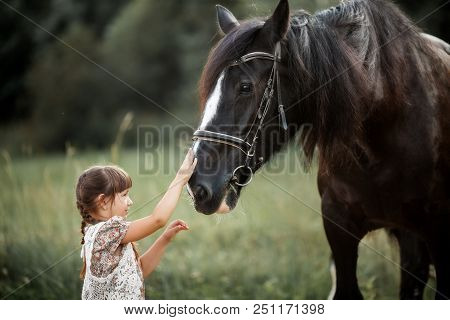Little Girl With Shire Horse At Summer Evening Day