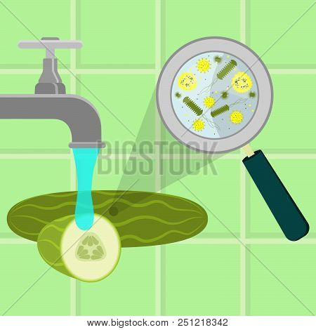 Contaminated Cucumber Being Cleaned And Washed In A Kitchen. Microorganisms, Virus And Bacteria In T