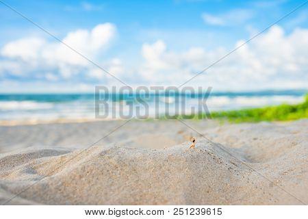 Image Of Runner On Sand Beach.