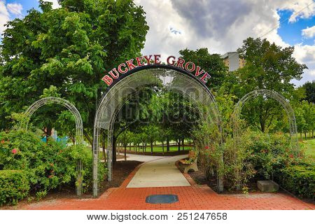 COLUMBUS, OHIO/USA - JULY 27, 2018:  Ohio Stadium its the home of the Ohio State Buckeyes football team.    Buckeye Grove is park located just outside the stadium and is full of buckeye trees.