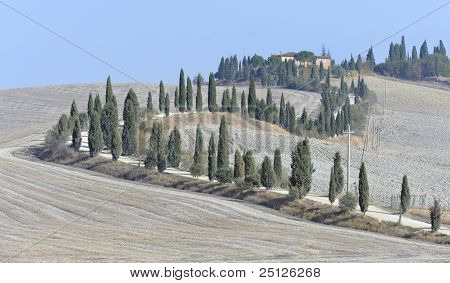 Classic tuscan view, la crete, tuscany