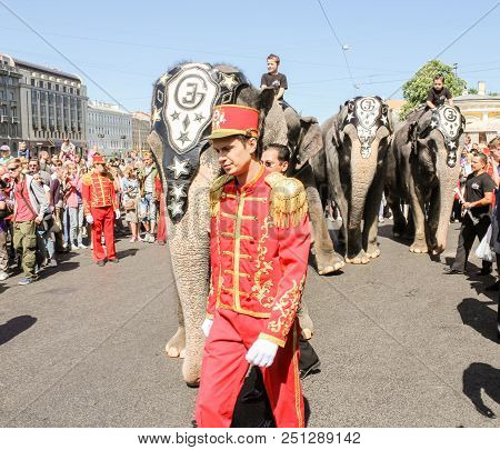 St. Petersburg, Russia - 26 May, Parade Of Elephants In The City, 26 May, 2018. Parade Of Elephants