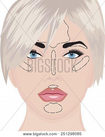 Where To Apply Highlighter Strobing Vector Illustration
