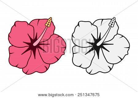 Tropical Hawaiian Flower Set. Vector Illustration.