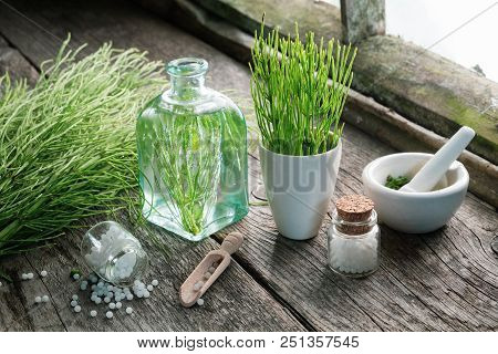 Horsetail Healing Herbs, Bottle Of Equisetum Infusion, Mortar And Bottles Of Homeopathic Globules. H