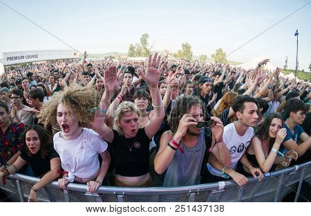 Cheerful Crowd Of People At Concert