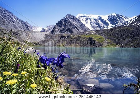 Small Mountain Lake With Blooming Flowers On Foreground. Beautiful Summer Landscape Of Altai Mountai