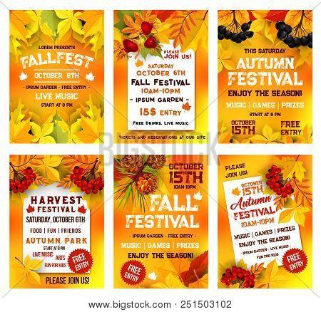 Autumn Festival Poster Template Set. Fall Season Harvest Celebration Banner, Adorned By Yellow Maple