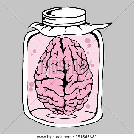 Brain. Vector Illustration Of A Human Brain In A Jar. Hand Drawn Brain In The Bank.
