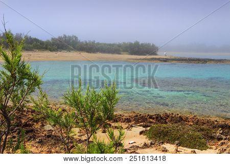 Discovery Apulia. Salento Coast: Nature Reserve Of Torre Guaceto (brindisi),italy. Mediterranean Maq