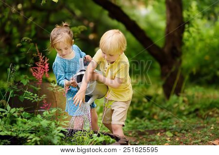 Cute Little Boy And Girl Watering Plants In The Garden At Summer Sunny Day. Mommy Little Helpers. Br
