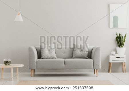 Green Plant On A Scandinavian Cabinet With Drawer And A Cozy Couch With Pillows In A Gray, Simple Li