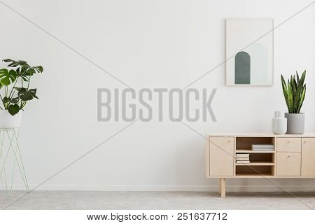 Poster Above Cupboard With Plant In White Living Room Interior With Copy Space. Real Photo. Place Fo