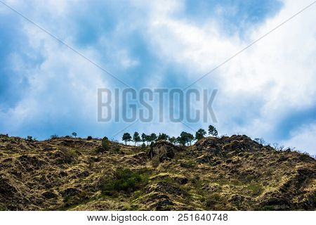 Mountain Range And Pine Trees Against The Blue Sky.
