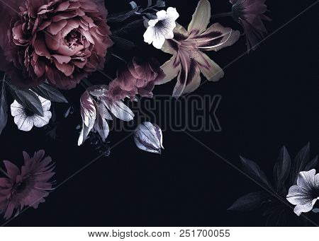 Floral Vintage Card With Flowers. Peonies, Tulips, Lily, Hydrangea On Black Background.  Template Fo