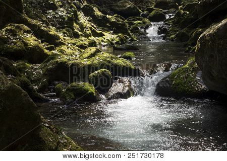 Fast Flowing Brook Between Mossy Rocks In Kagoshima