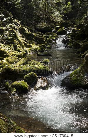 Fast Flowing Brook Between Mossy Rocks In Vertical Composition